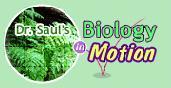 Logo for Evolution Lab